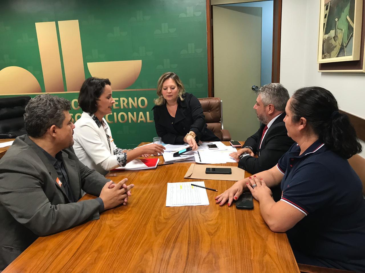 CRF/MG participa de discussão junto a líder do governo no Congresso Nacional sobre um novo modelo para os Conselhos de Classe